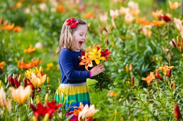 Flower picking festival happening over Pesach is a great events for children and adults alike