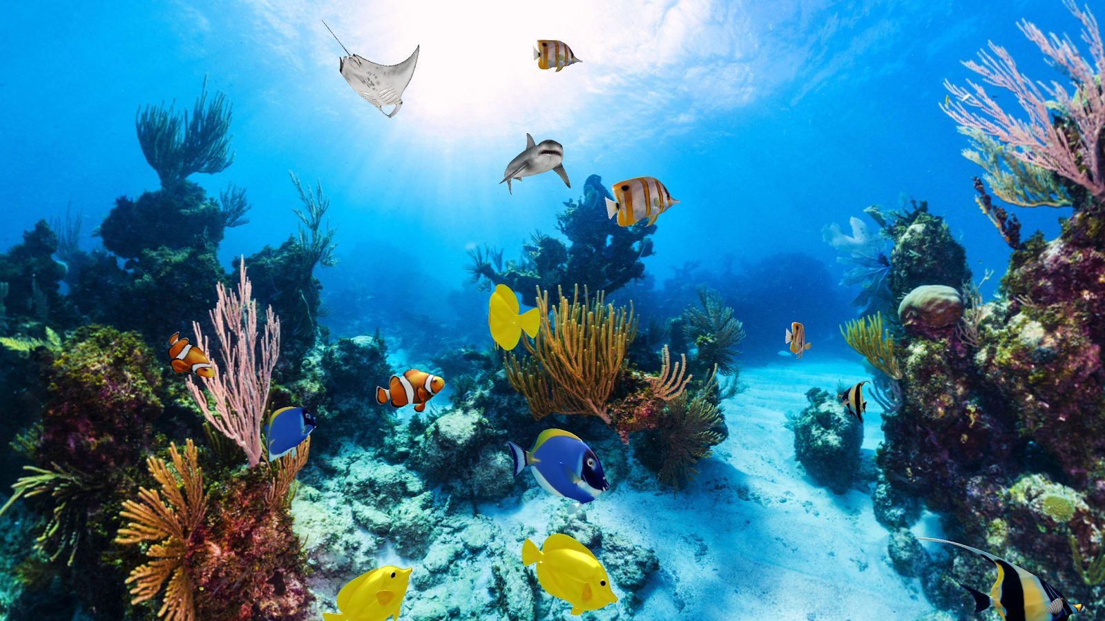 Hof Almog, or Coral Beach, with its colorful fish and coral, is an ideal beach for snorkeling
